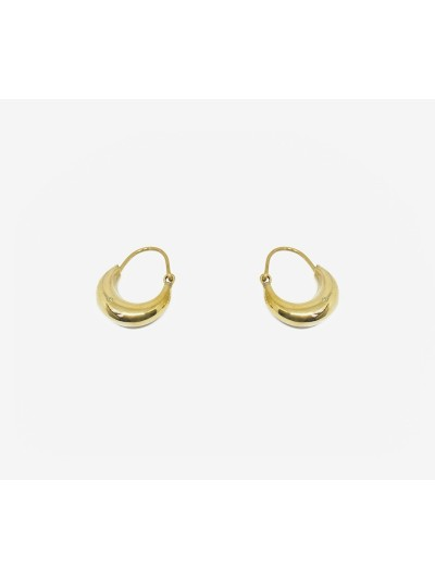 Small Hoop Earring Simple...
